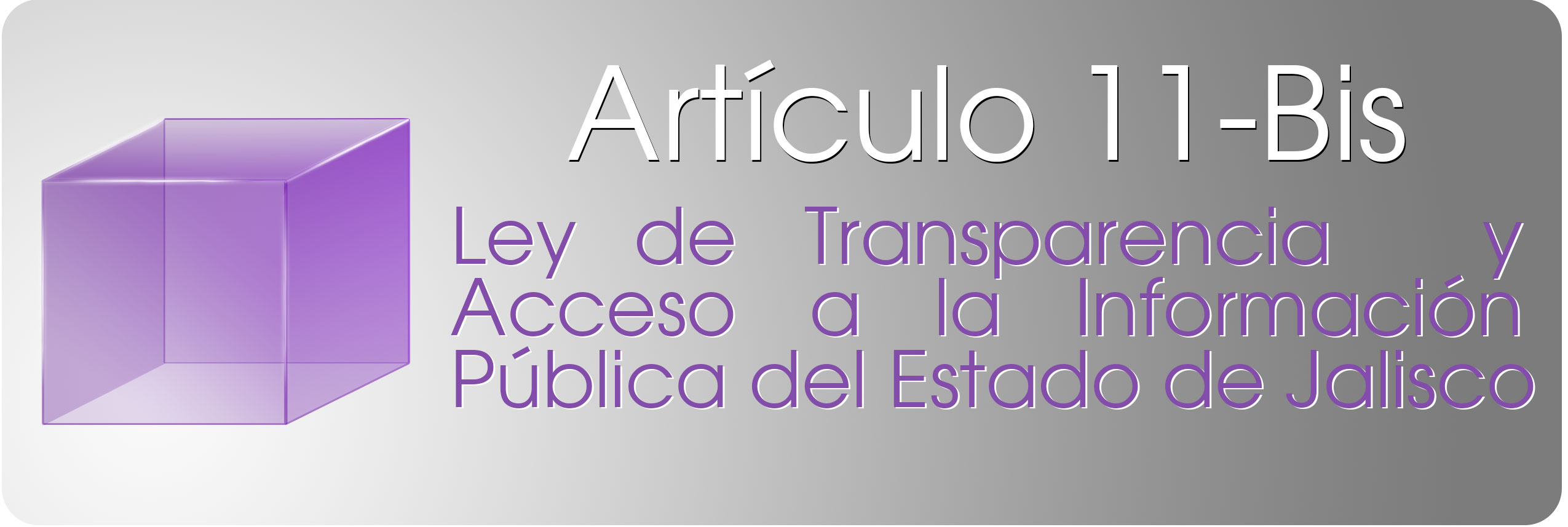articulo-11-transparencia